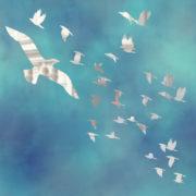 Flock Of Birds 3